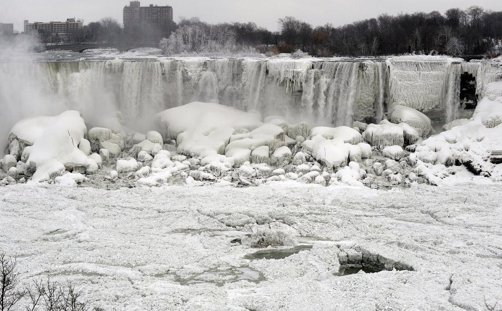 Ледяные сосновые шишки в Торонто
