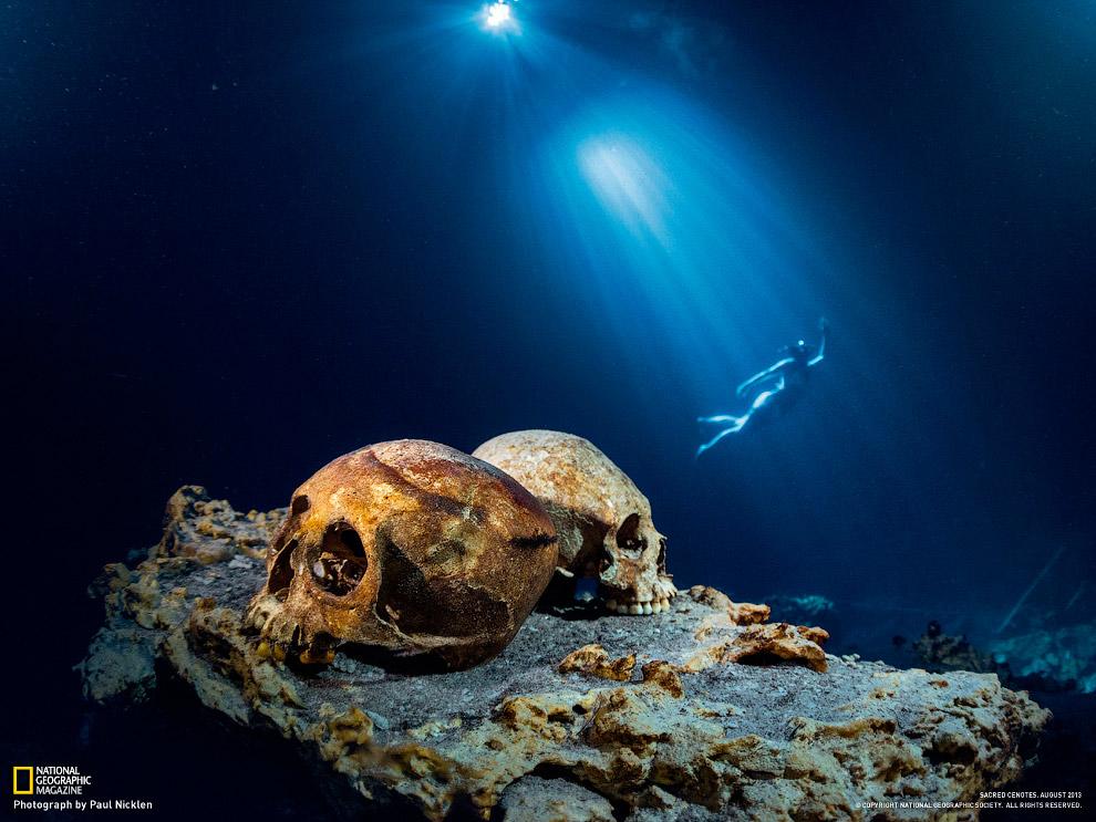 Секреты подводного мира