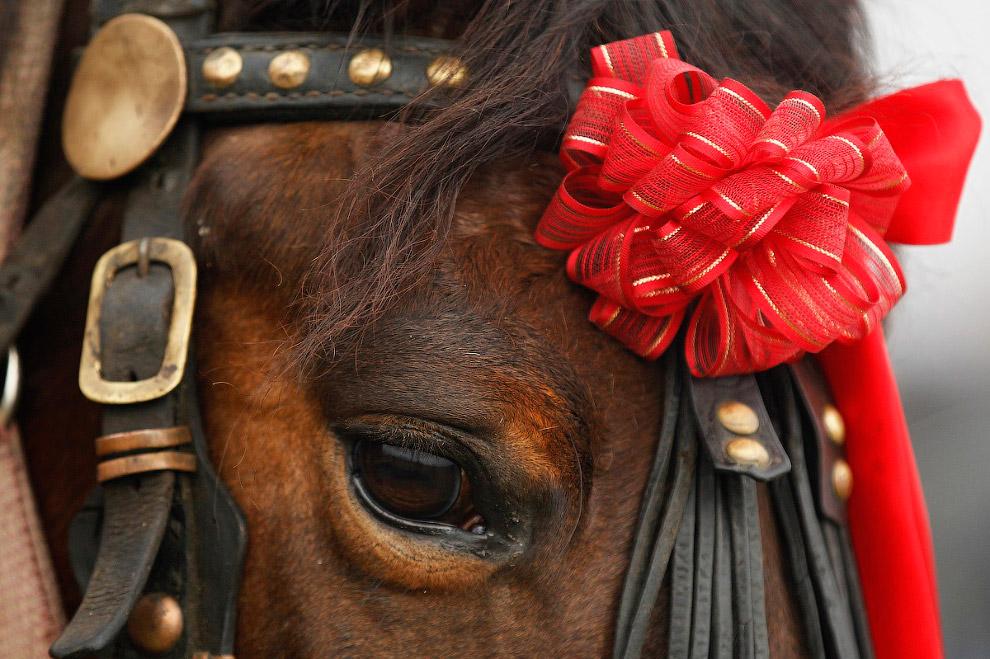 Рождество в Румынии