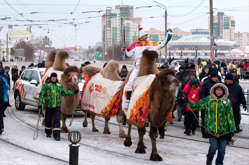 17 декабря 2013 в Челябинске к перевозке Олимпийского факела подключились верблюды