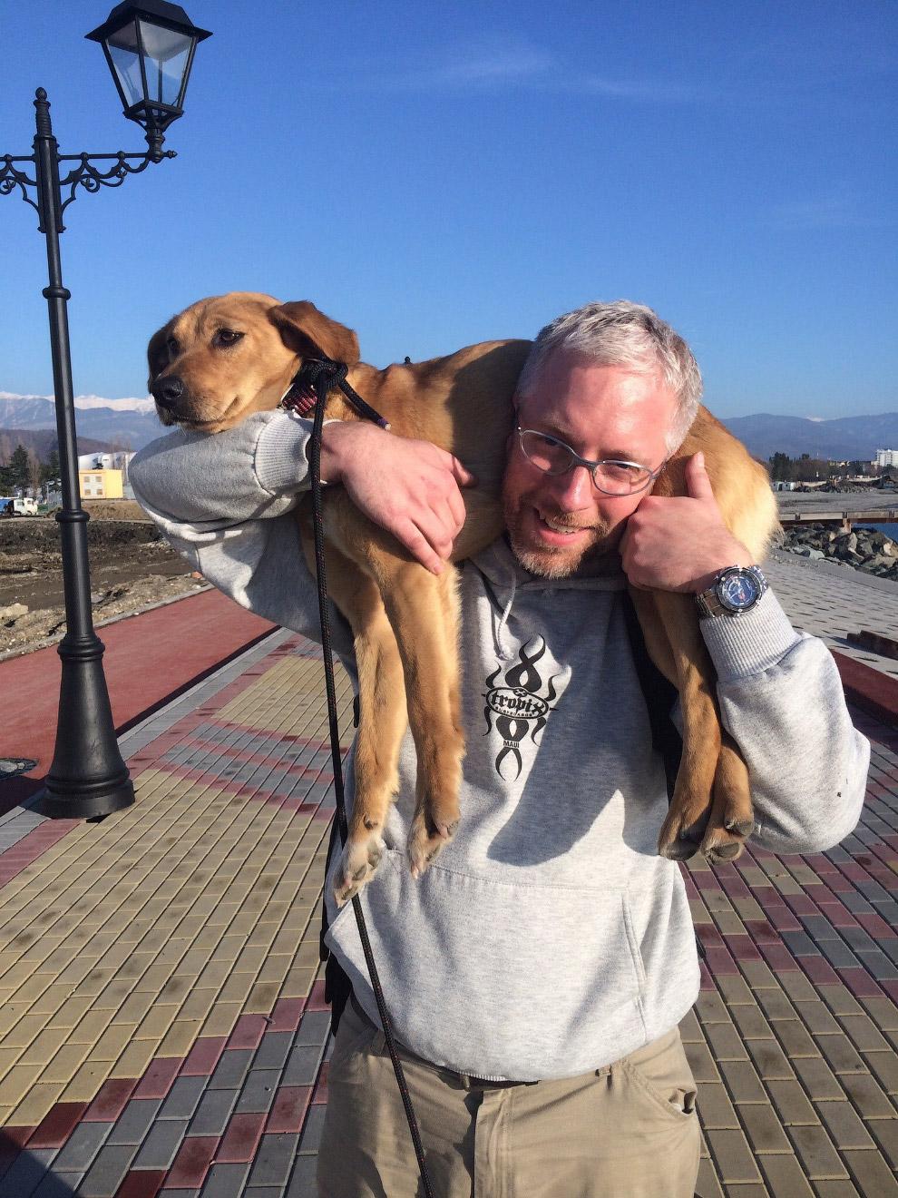 Нейл Дререр из Денвера, который работает на Играх в Сочи, нашел там себе четвероногого друга среди местных бродячих собак и собирается увезти его домой в Штаты