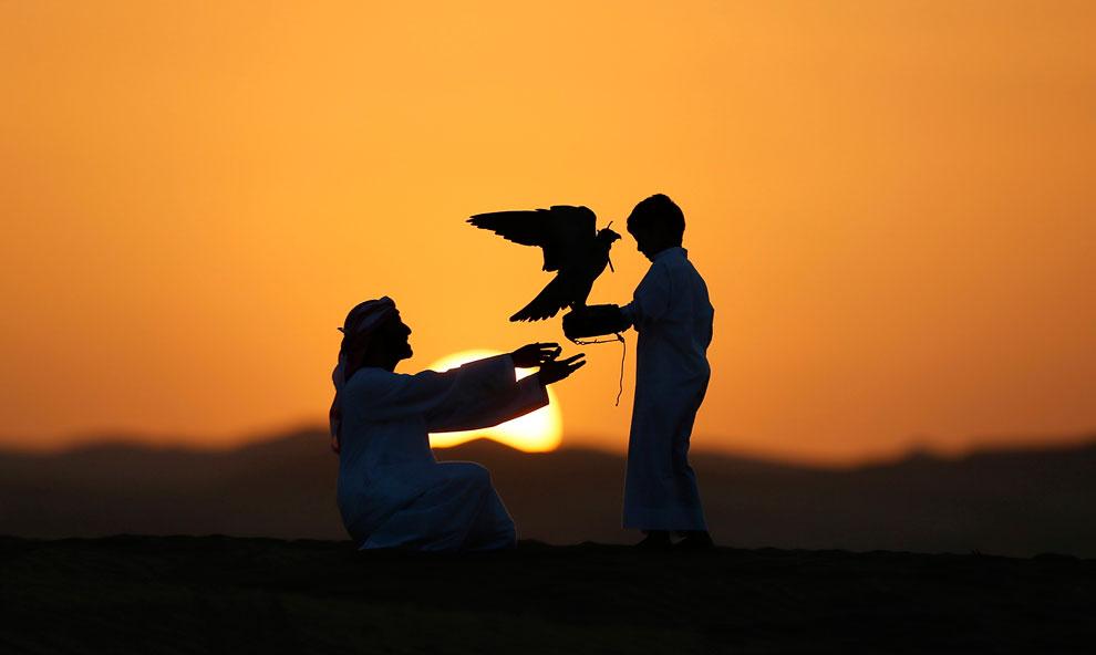 Мужчина с мальчиком и соколом в пустыне Лива, в 220 км к западу от Абу-Даби