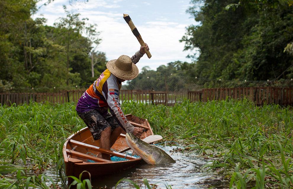 Особенности национальной рыбалки в Южной Америке