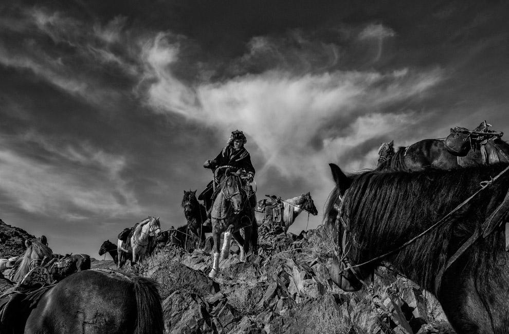 Казахи, живущие в Монголии, верхом на лошадях