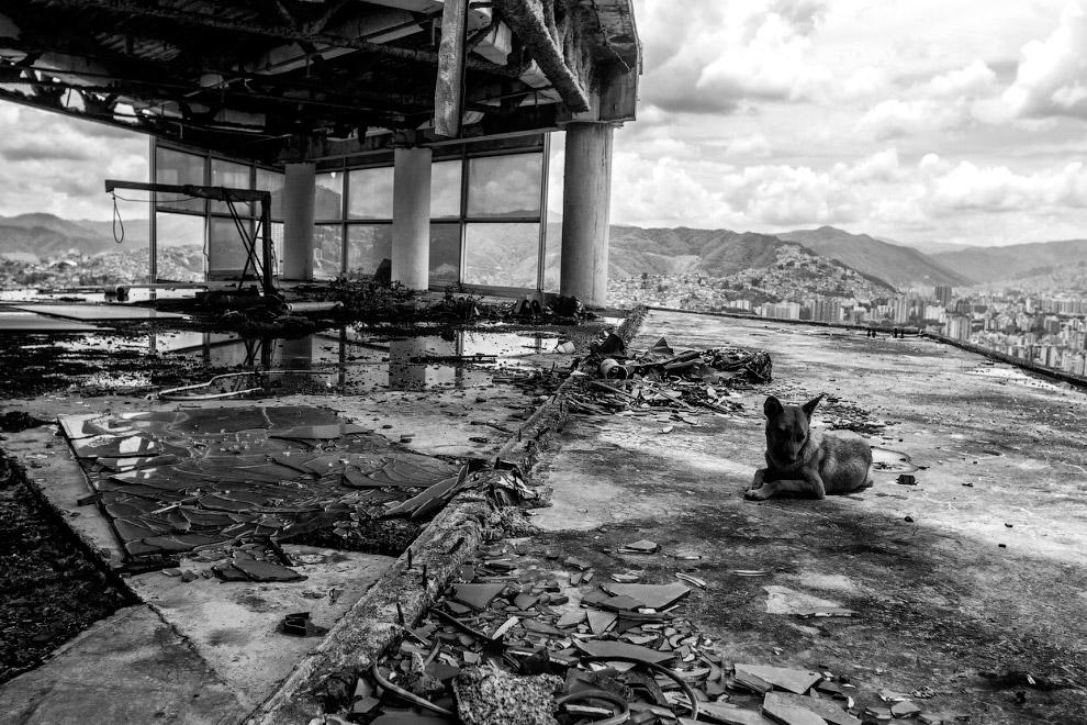 Небоскреб в центре  в центре Каракаса