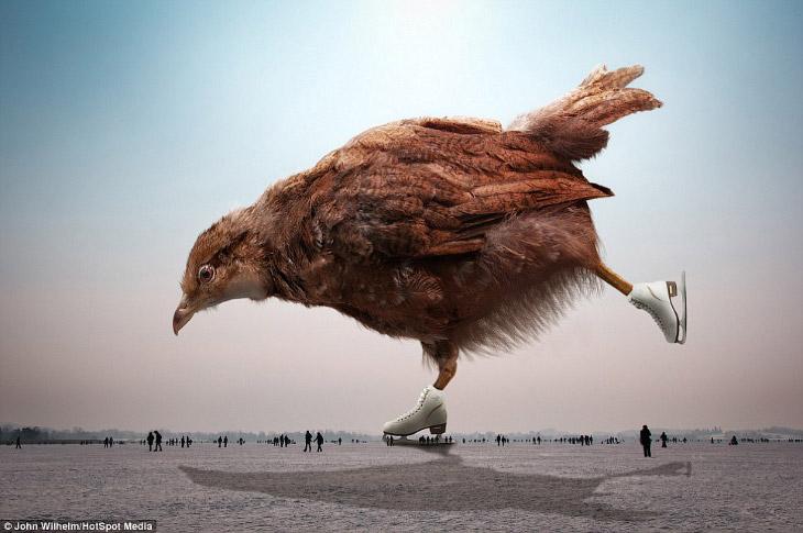 Все возможно: 43-летний фотограф сказал, что вдохновился к созданию гигантского птенца после после катания на замерзшем озере