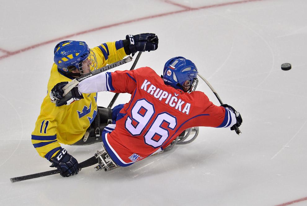 Соревнования по следж-хоккею в рамках XI зимних Паралимпийских игр в Сочи на арене «Шайба»