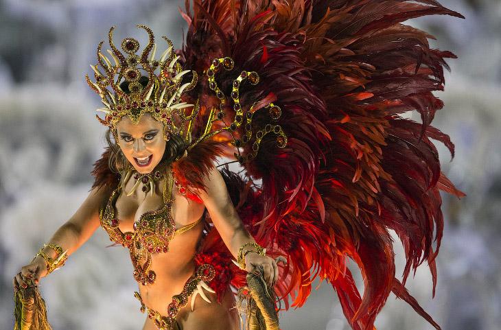 Карнавалы 2014