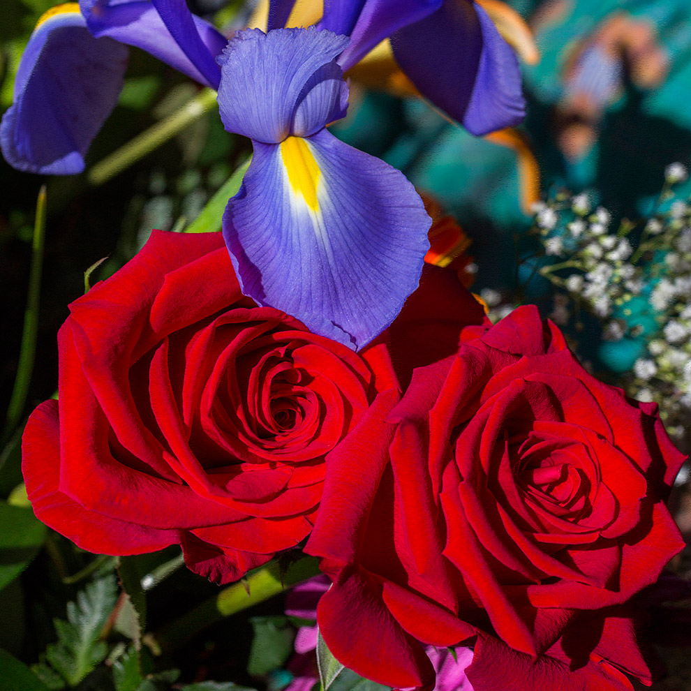 С 8 Марта — Праздником весны!