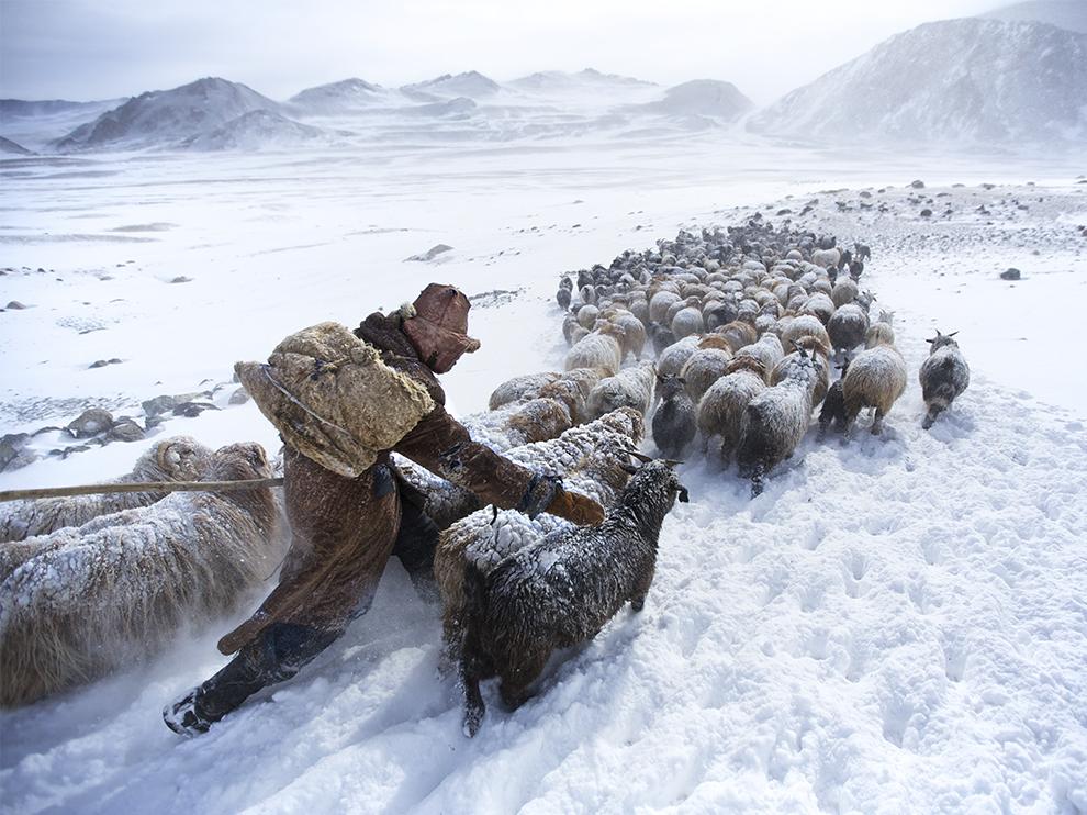 Кочевники в Монголии