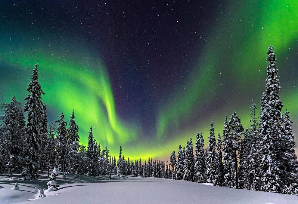 Северное сияние над Национальным парком Пюхя-Луосто в Финляндии