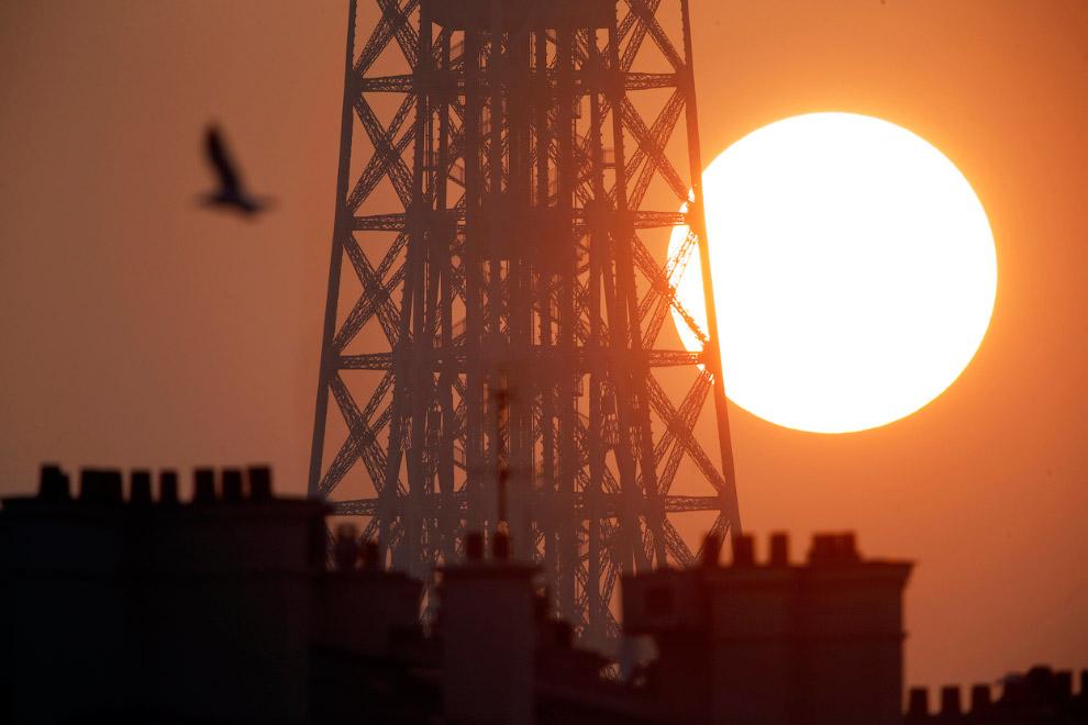 Эйфелева башня на закате. В Париж пришла весна