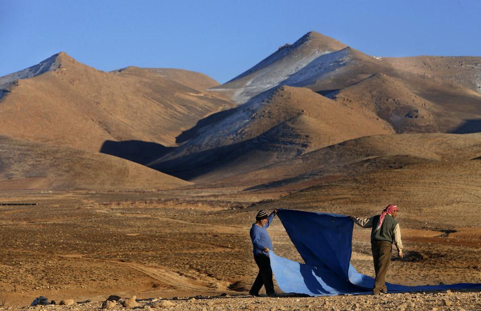 Беженцы. Устанавливают палатку на ливано-сирийской границе
