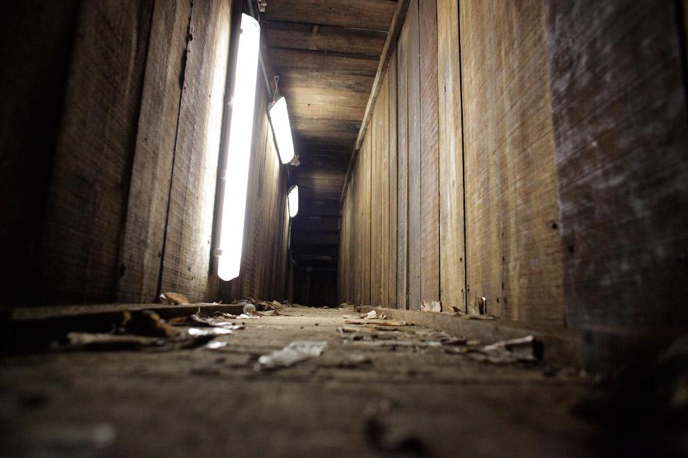 В другую сторону от железной двери идет ход прямо под домом хозяина