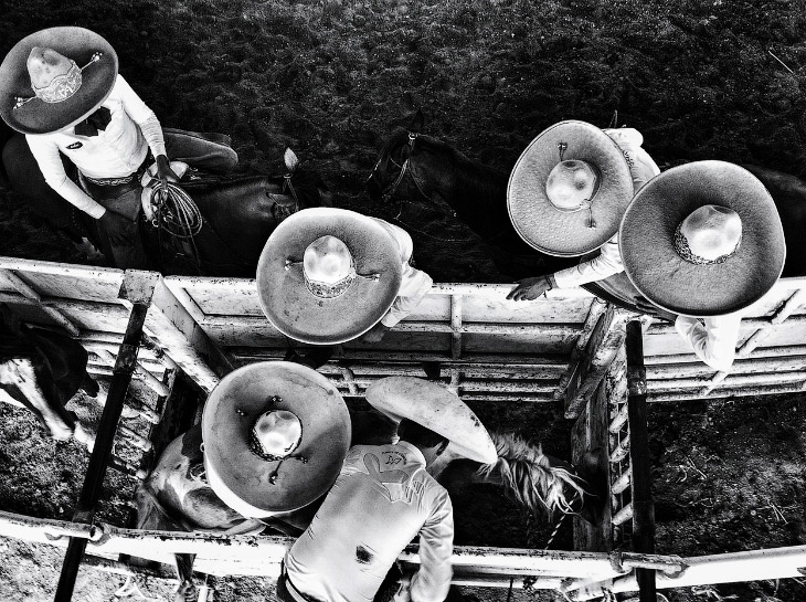 Подготовка к Charreria — мексиканскому родео, Тепик, Мексика