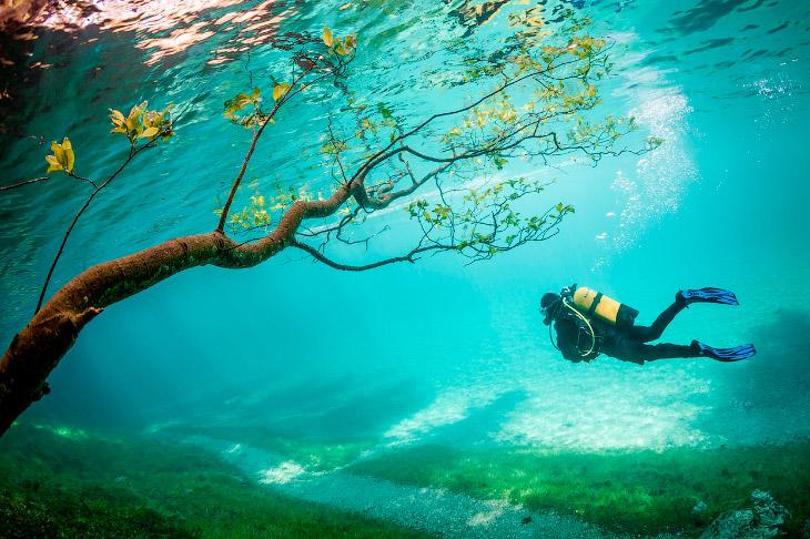 Зеленое озеро в Австрии