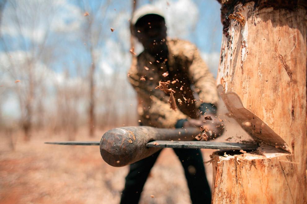 Провинция Кабу-Дельгаду, Мозамбик