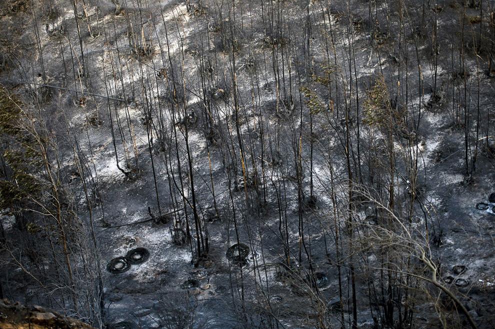 Уничтоженные леса на холмах