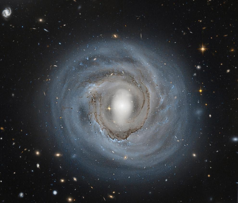NGC 4921 — галактика в созвездии Волосы Вероники