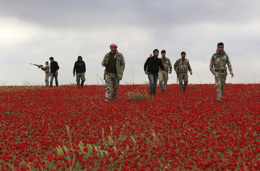 Непривычные кадры из Сирии