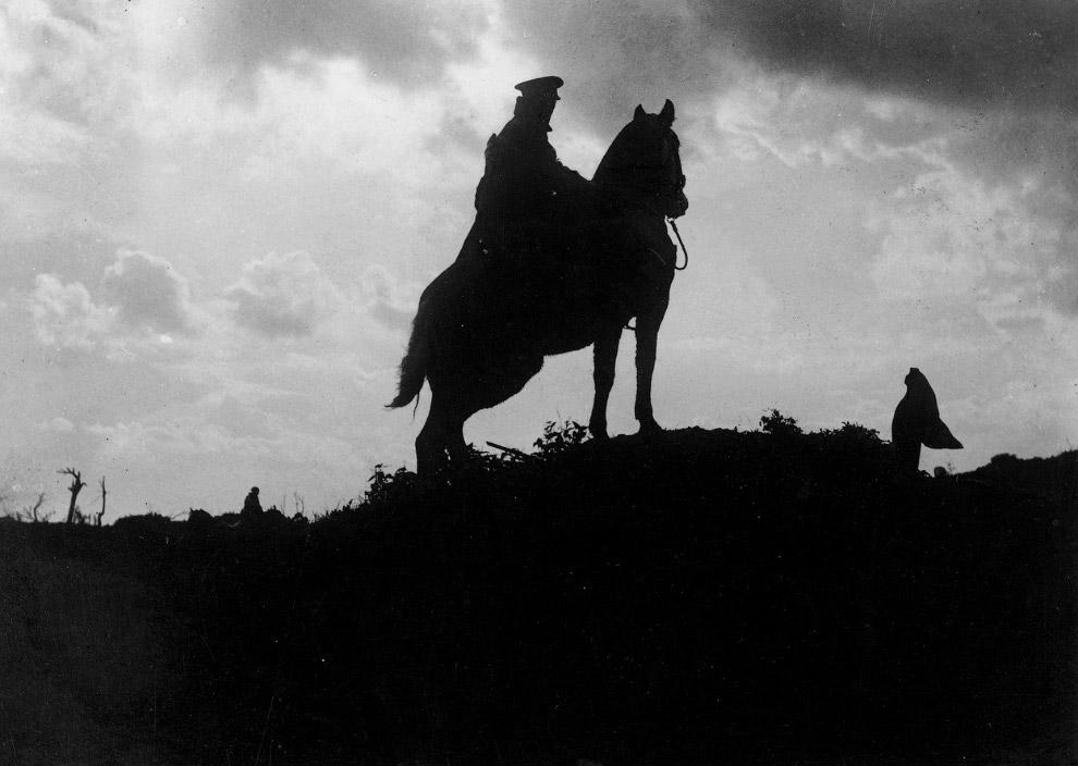 Силуэт солдата на коне