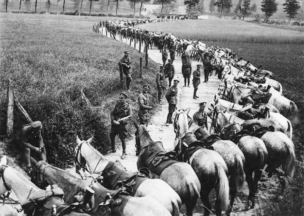 Кавалерийский полк во Франции