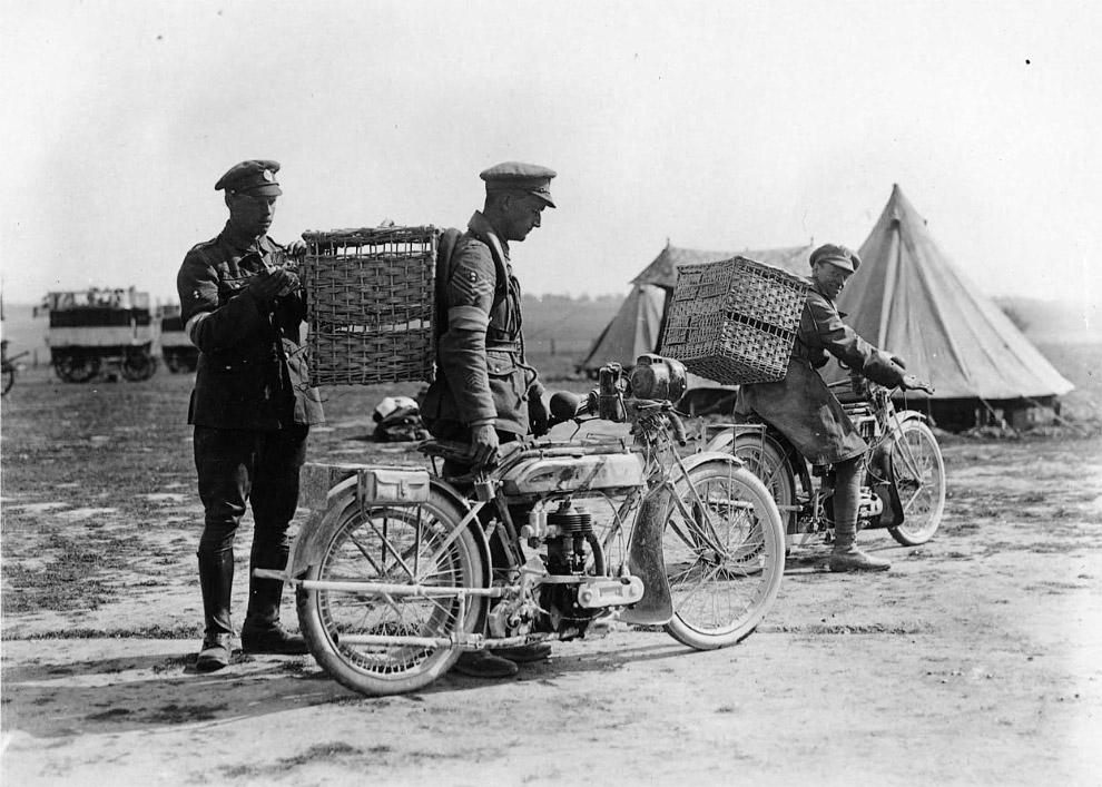 Два солдата на мотоциклах с корзинами, в которых находятся голуби