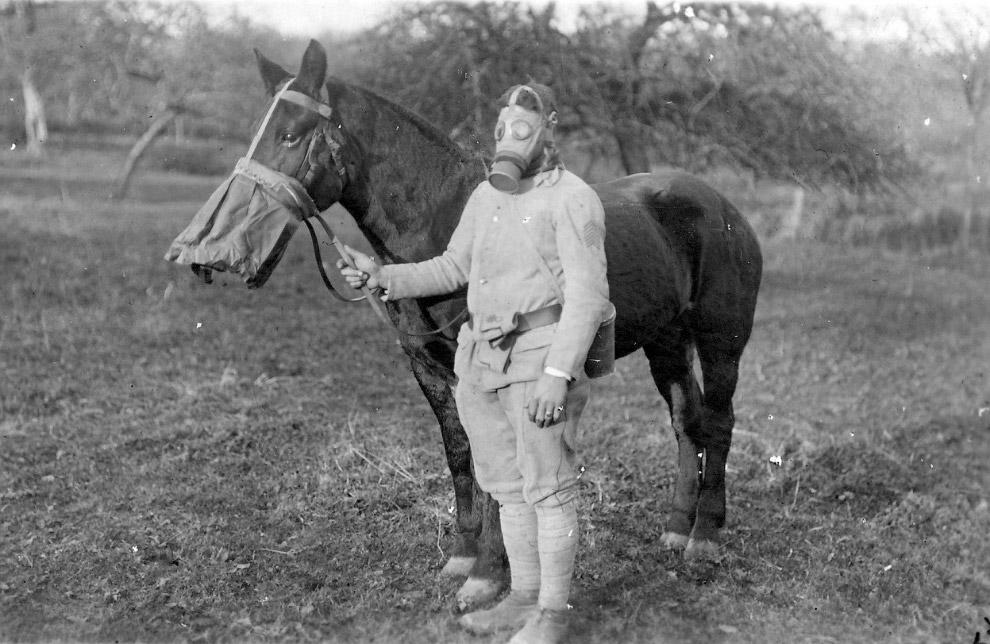 Солдат и его лошадь в противогазах