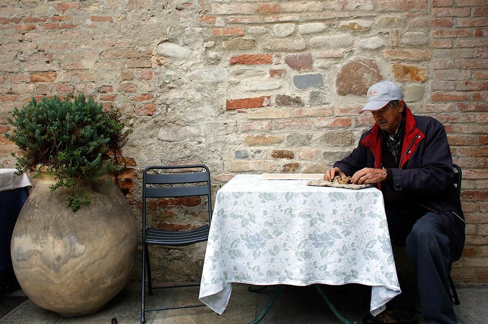 Охотник за трюфелями Эцио Коста рассматривает найденные грибы