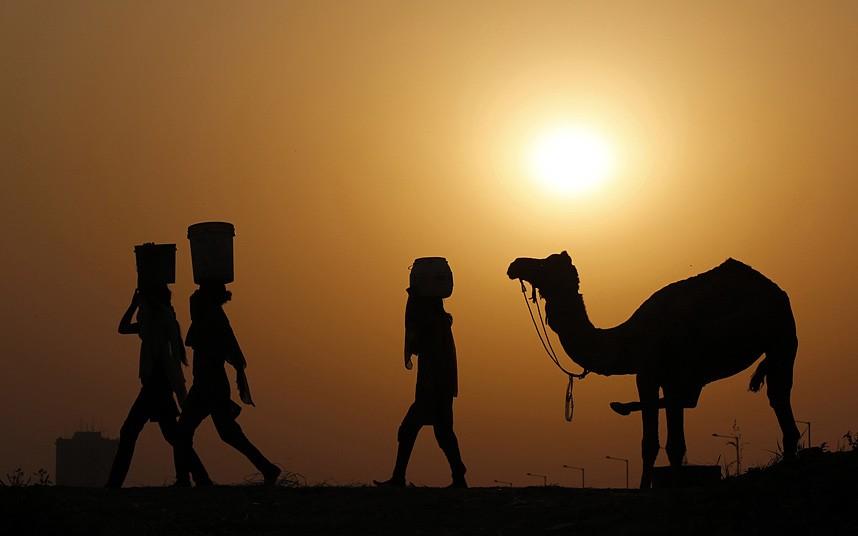 Девушки, несущие ведра с водой на голове, верблюд и закат на берегу реки Ямуна в Нью-Дели