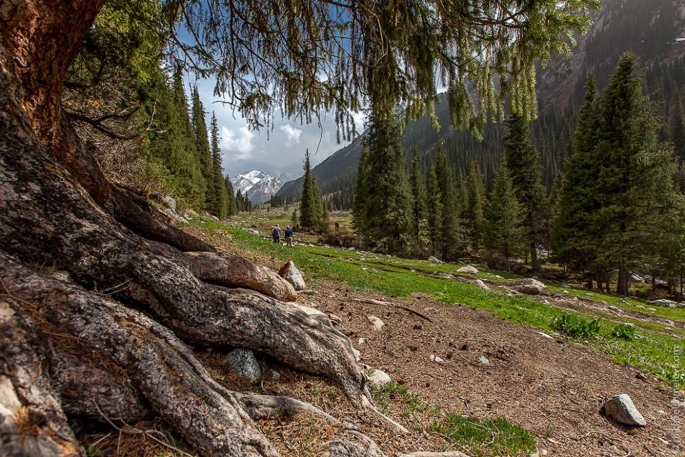 Живописная долина в ущелье Джети-Огуз