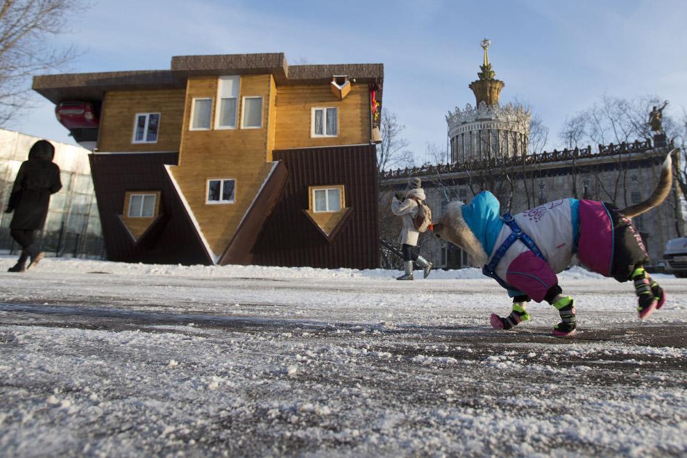 Дом вверх дном в Москве на ВДНХ.