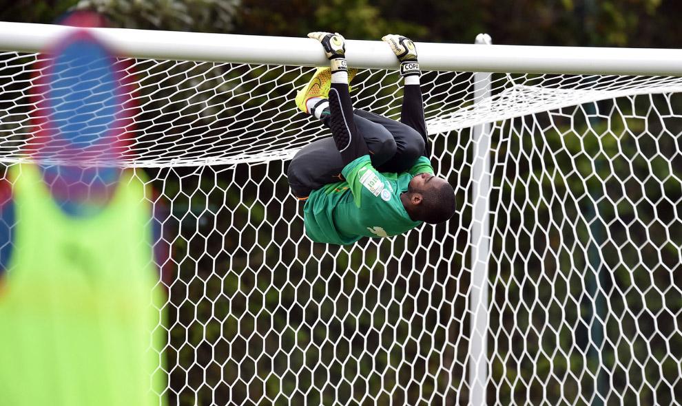 Вратарь сборной Кот-д'Ивуара разминается на воротах