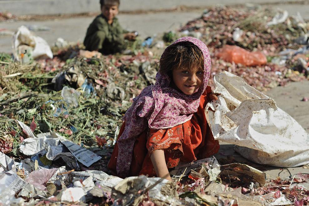 Сбор еды со свалки свалки в Исламабаде, Пакистан