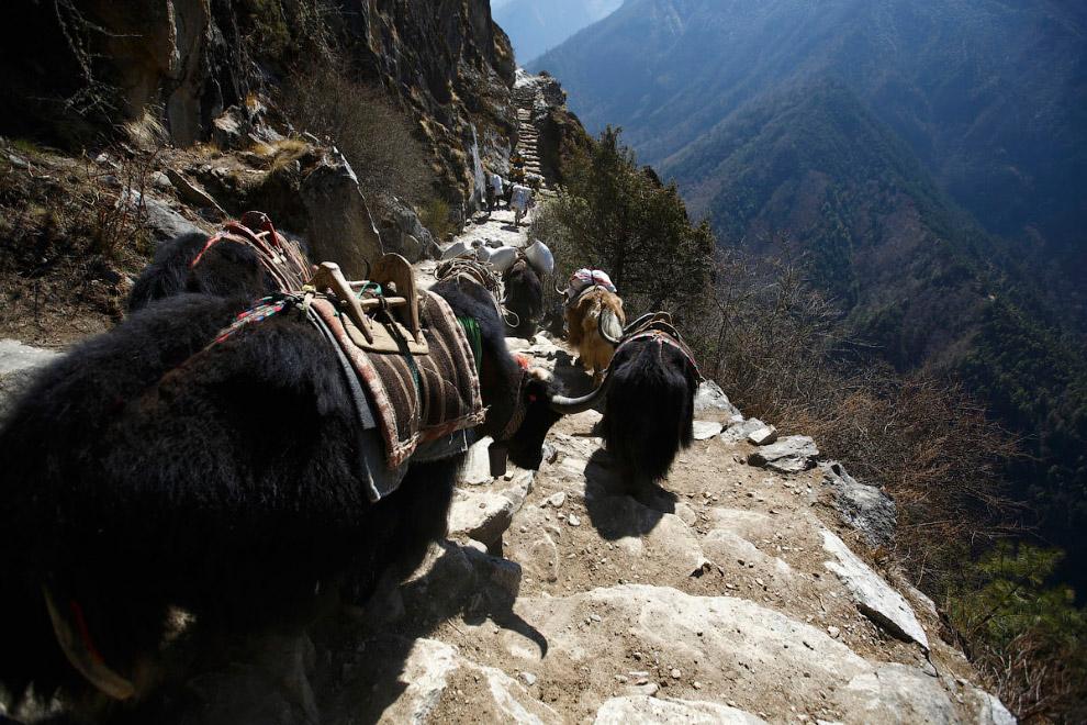 Опасная дорога. На пути к базовому лагерю Эвереста