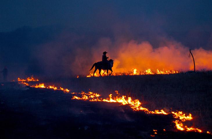 Ковбой и горящие прерии Канзаса