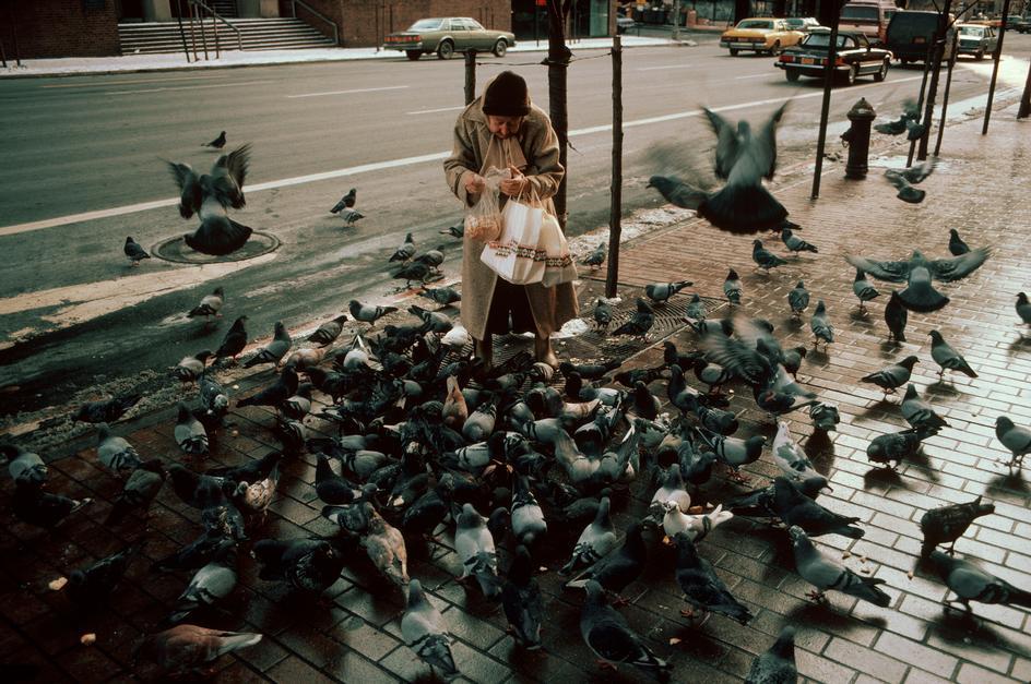 Женщина кормит голубей на Второй авеню