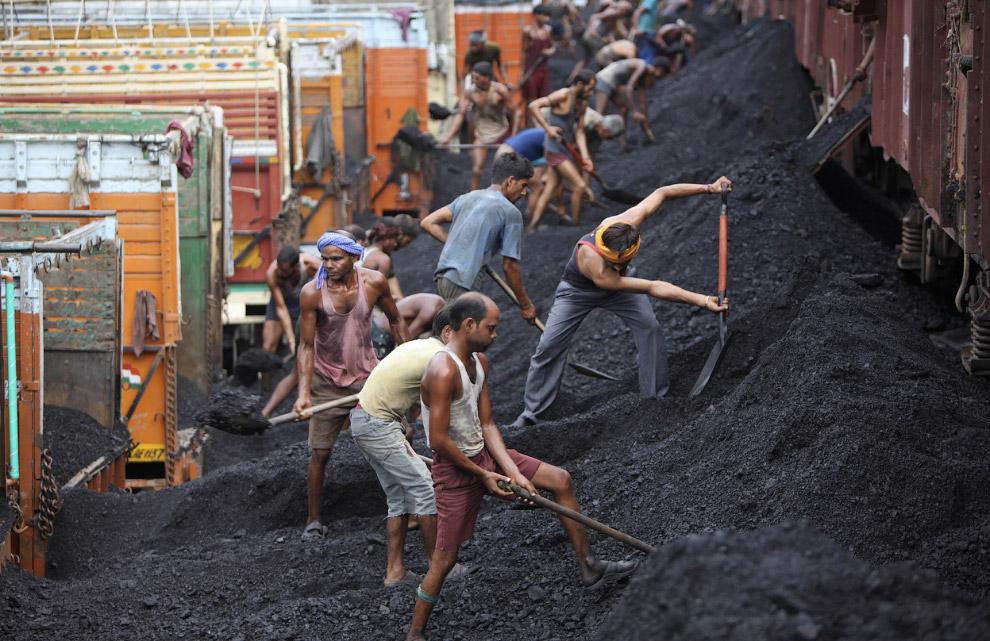 Индийские рабочие грузят уголь в машины на окраине Джамму