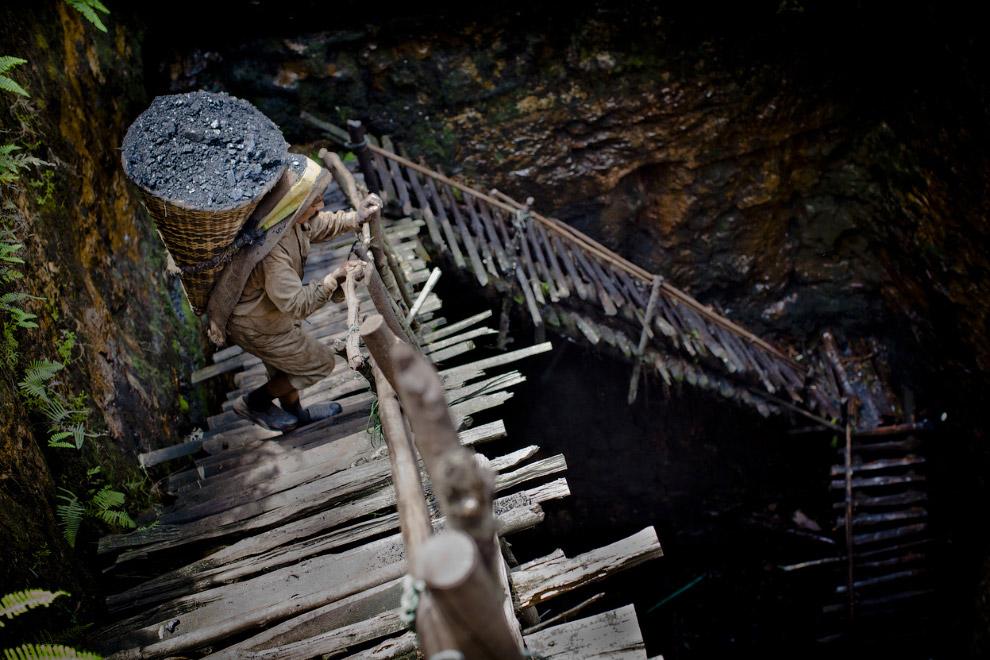 38-летний рабочий шахты в Индии, поднимает корзину с углем весом 60 кг