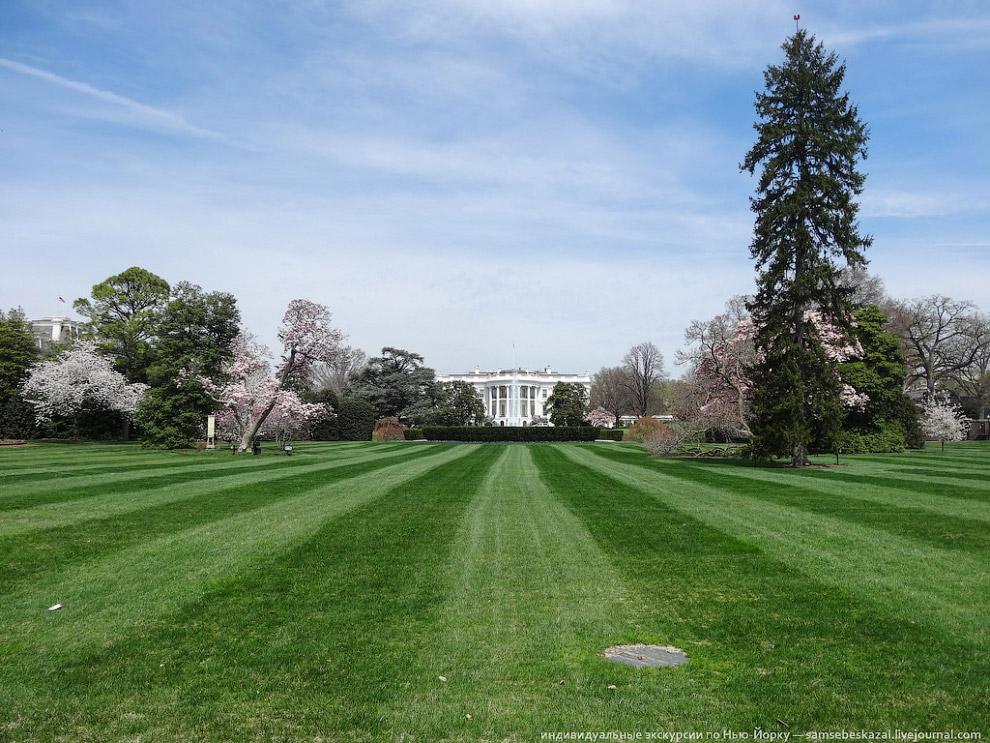 Южная лужайка перед Белым домом