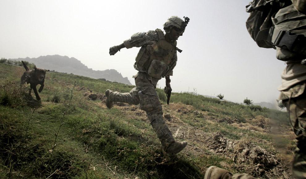 Солдаты с собакой бегут в укрытие