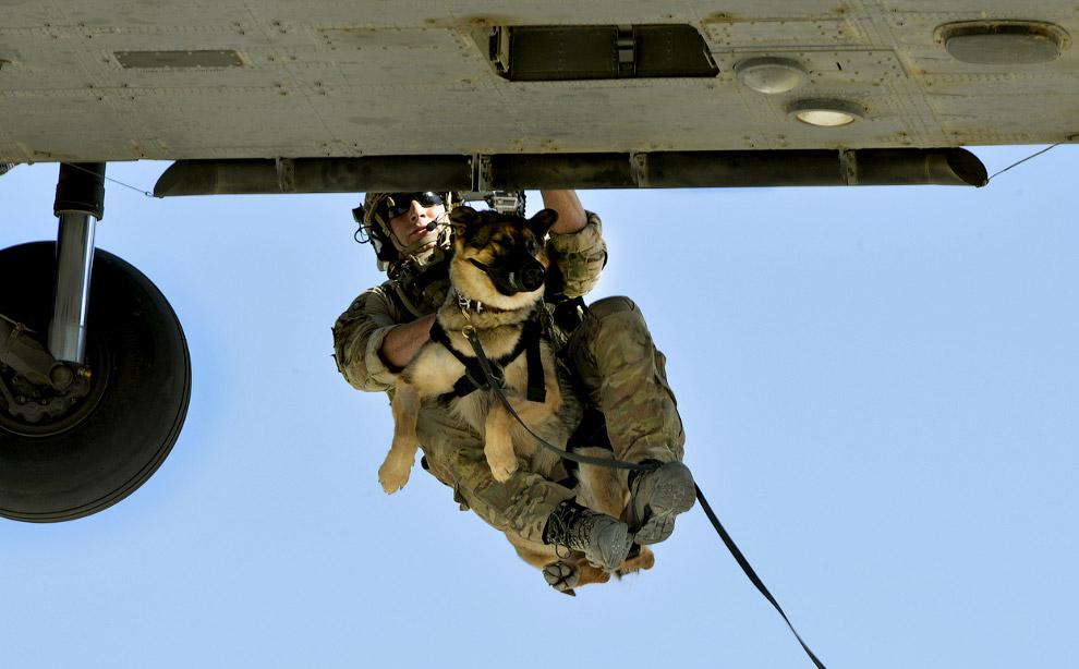 Спуск в вертолета,  Афганистан