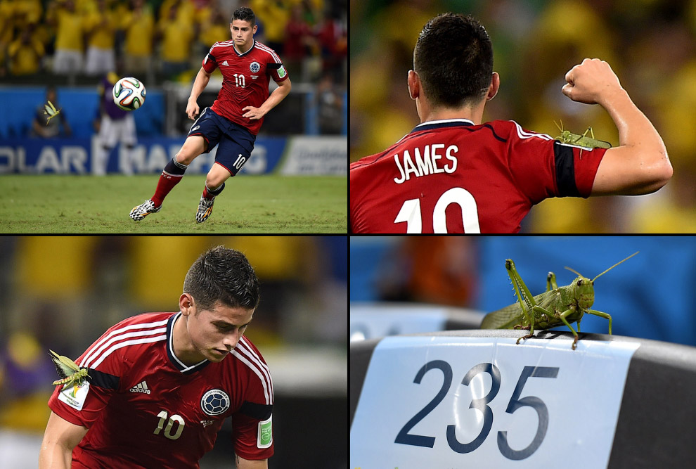 Колумбиец Джеймс Родригес пробивает пенальти в ворота Бразилии