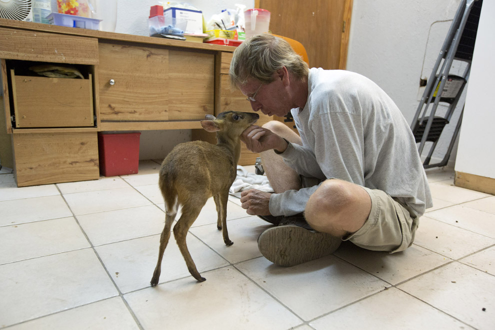 Директор организации по уходу за животными беседует с оленем