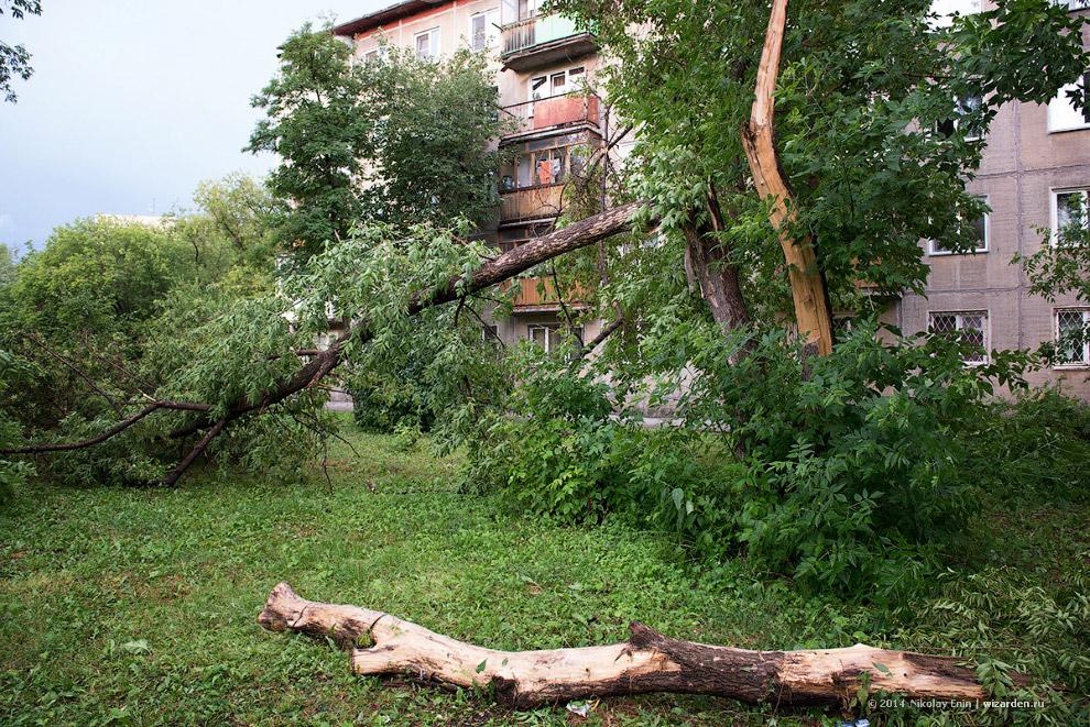 Ураган в Новосибирске