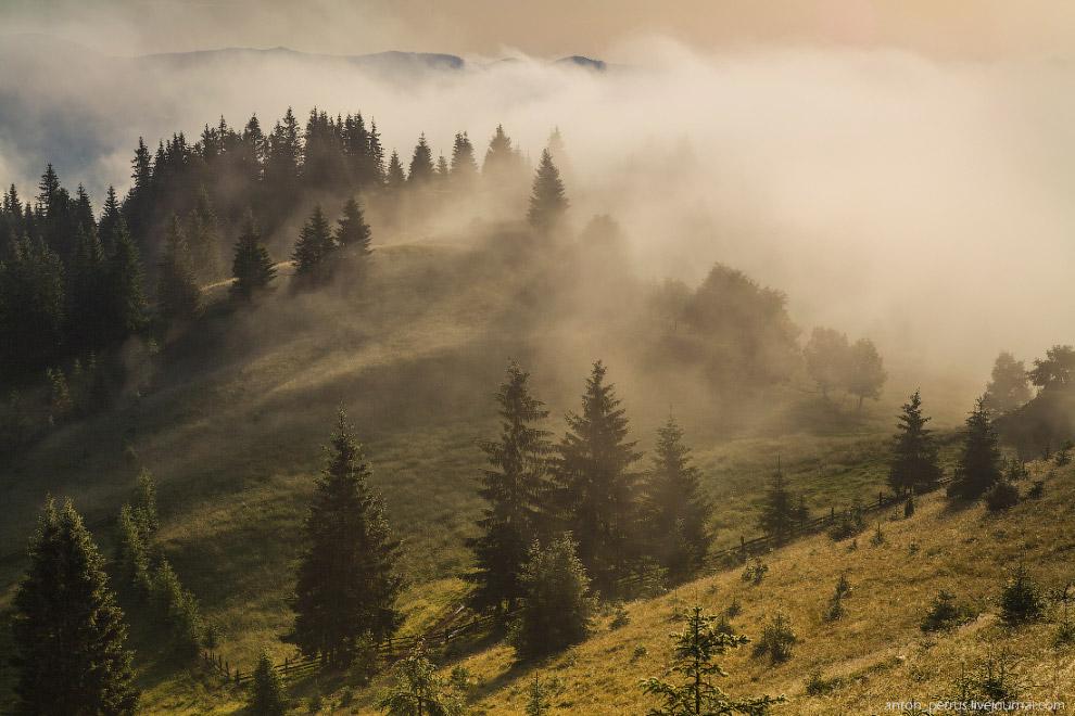 Туманы в Карпатах