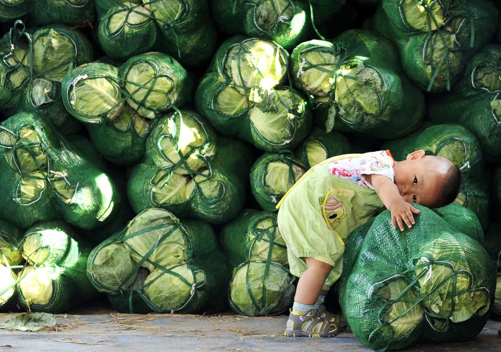 Мальчик на овощном оптовом рынке в Цзинань, провинция Шаньдун, Китай