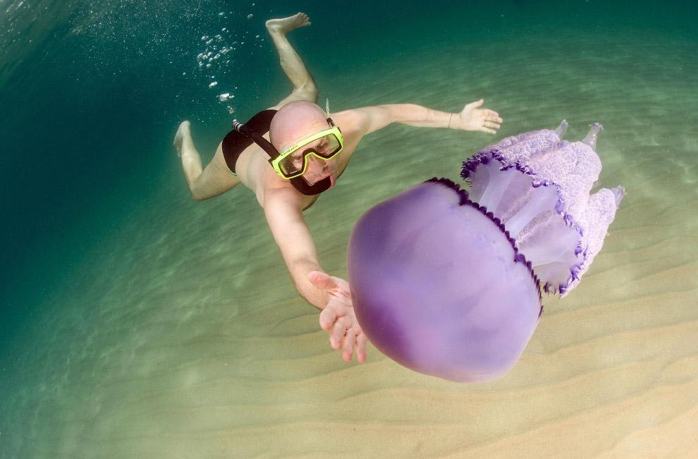 Ныряльщик и медуза на восточном побережье Сардинии, ИталияНыряльщик и медуза на восточном побережье Сардинии, Италия