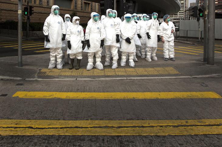 В Гонконге в партии кур из материкового Китая нашли вирус птичьего гриппа H7N9, медработники в защитных костюмах отправились с инспекцией на птичий рынок