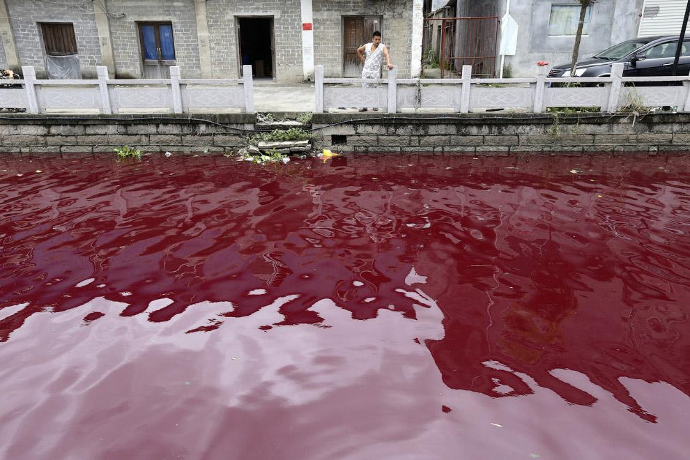 Загрязненная река в провинции Чжэцзян